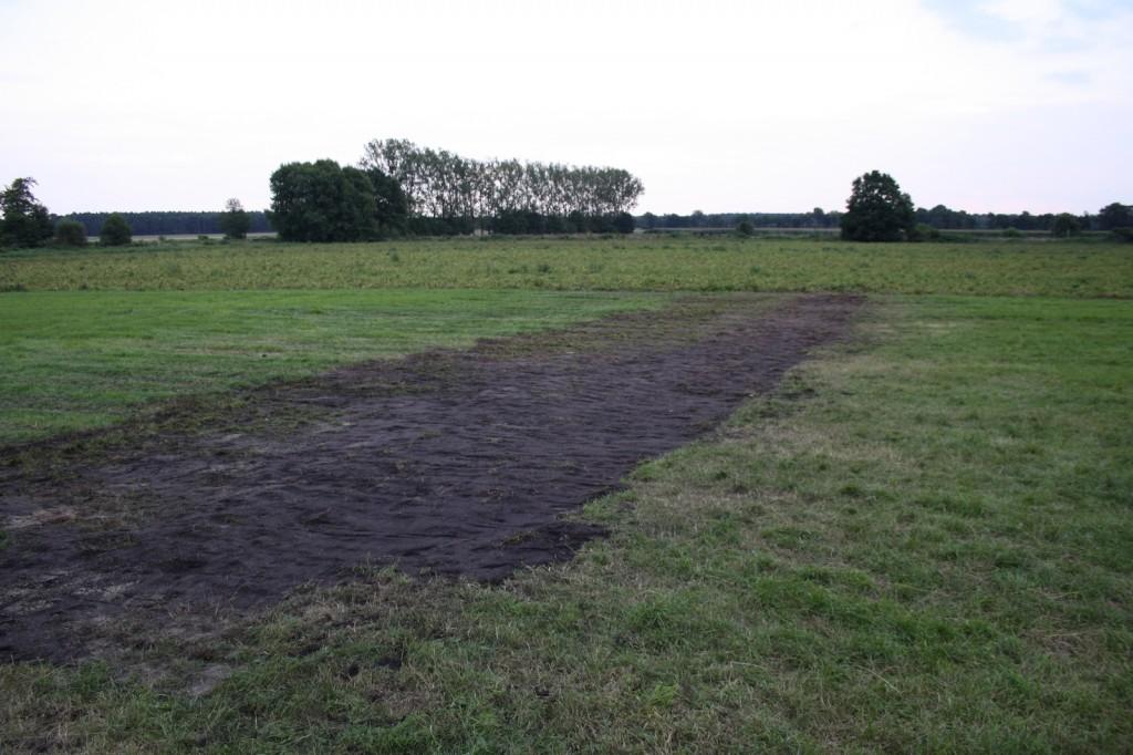 Der Grabungsschnitt wurde am Donnerstag wieder verschlossen